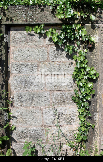 Bricked up doorway in stone wall of garden - Stock Image & Wall Bricked Up Entrance Stock Photos \u0026 Wall Bricked Up Entrance ... Pezcame.Com