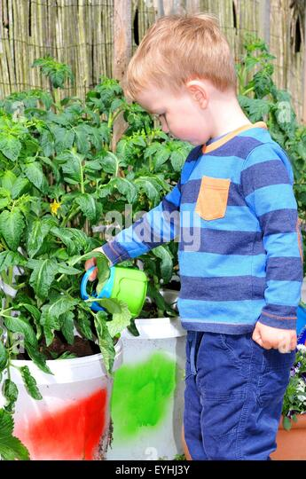 portrait of a child gardening stock image