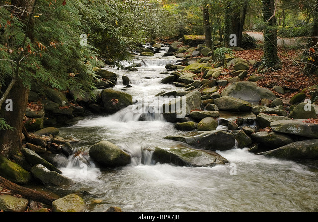 Roaring Fork Creek Stock Photos Roaring Fork Creek Stock