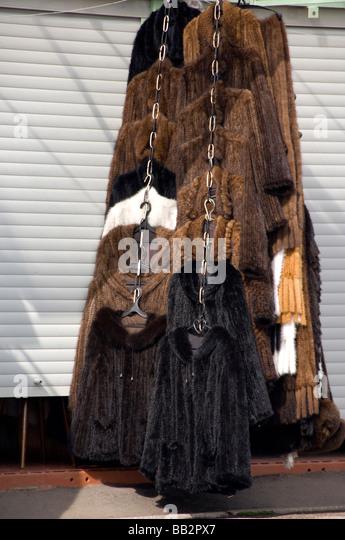 Mink Fur Stock Photos & Mink Fur Stock Images - Alamy