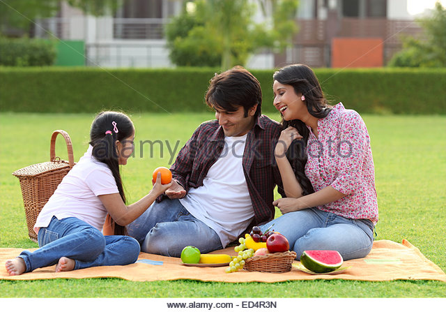Hindi translation of 'picnic'