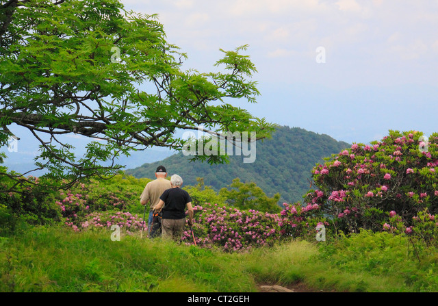 Craggy Gardens Stock Photos Craggy Gardens Stock Images Alamy