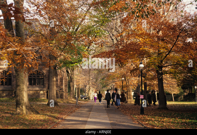 princeton university campus autumn stock photos
