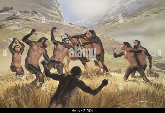 Homo Habilis Stock Photos & Homo Habilis Stock Images - Alamy
