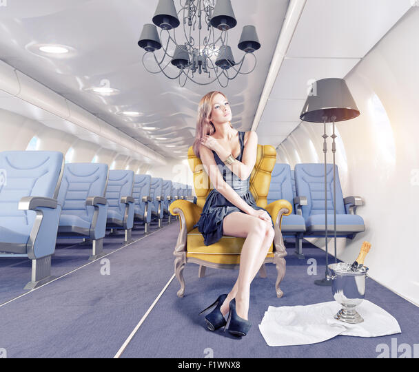 Luxury Woman On Airplane : Vector stock photos images alamy