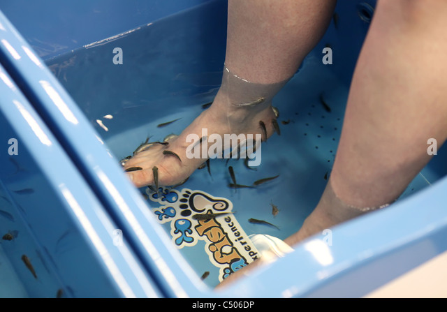 Garra stock photos garra stock images alamy for Fish eating dead skin pedicure
