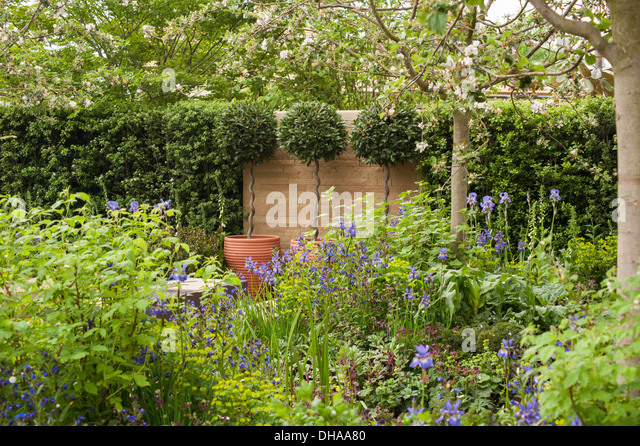 Seeds of change stock photos seeds of change stock for Garden trees homebase