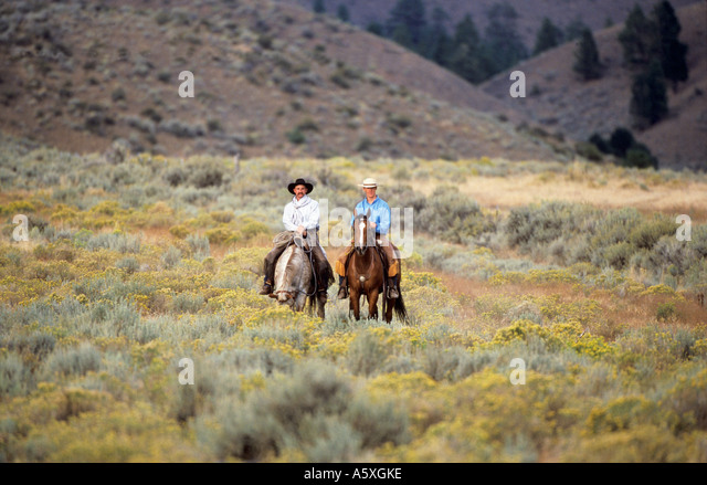 Two cowboys riding horses stock photos two cowboys Usa countryside pictures