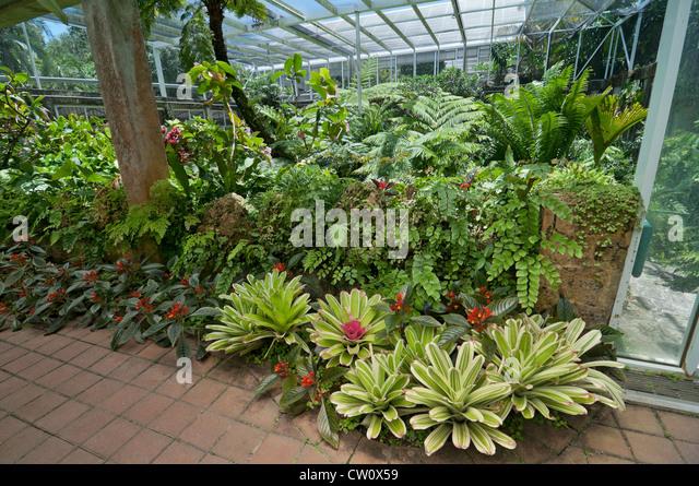Fairchild Botanical Garden Stock Photos Fairchild