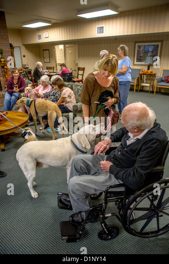 Retirement Home For Dogs Ny
