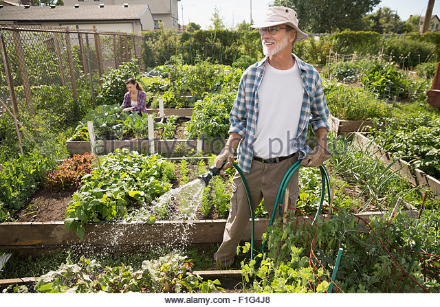 Woman spraying man with stock photos woman spraying man for Watering vegetable garden