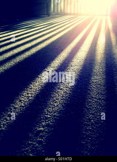 sunlight-through-blinds-s01htd.jpg