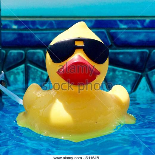 Rubber Duck In Pool Stock Photos Amp Rubber Duck In Pool