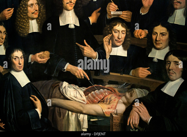 Who painted the anatomy lesson 8151216 - follow4more.info