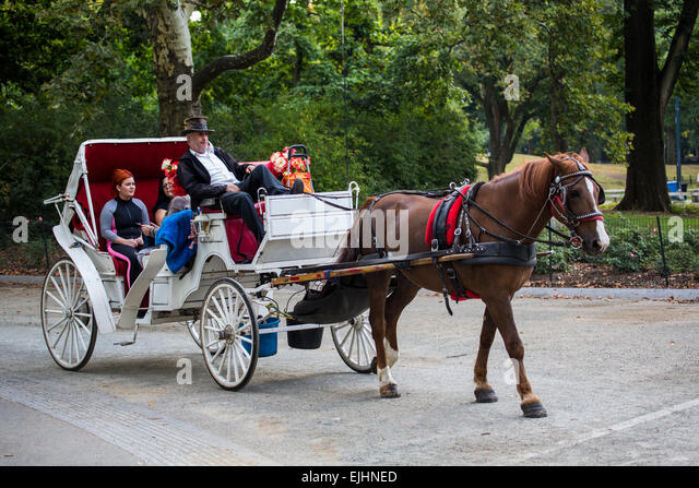 horse and carriage central park stock photos horse and carriage central park stock images alamy. Black Bedroom Furniture Sets. Home Design Ideas