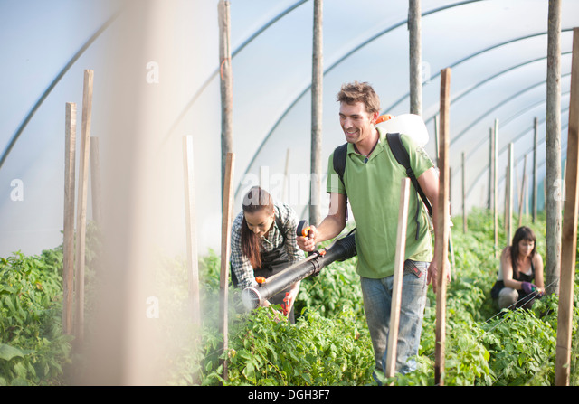 working on a vegetable farm The farm where they were working supplies produce to a distributor in arizona, which ships it to wholesale markets and other outlets across the us in guanajuato, children were seen.