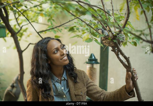 Half Woman Half Tree