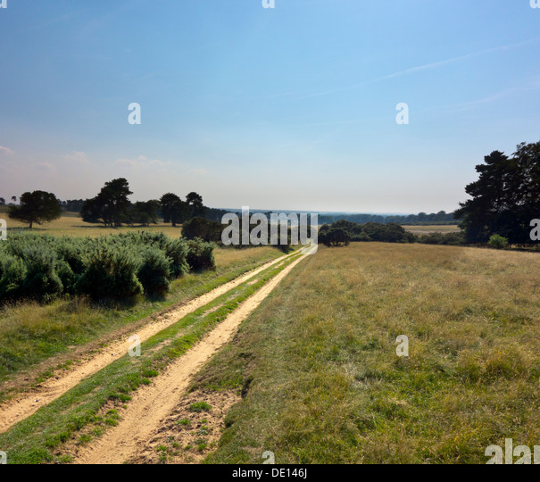 Where Is Breckland: Breckland Stock Photos & Breckland Stock Images