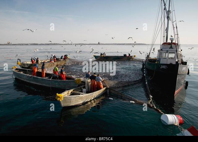 Hauling fish boat stock photos hauling fish boat stock for Fishing newport ri