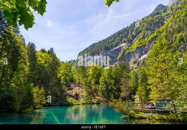 blausee schweiz or blue lake nature park in summer kandersteg switzerland stock image wetter