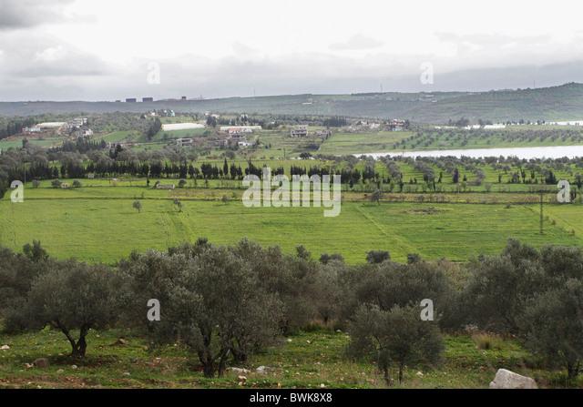 fertile land - photo #40