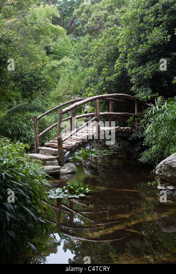 Wooden Arch Bridge At The Zilker Botanical Japanese Garden In Austin, Texas    Stock Image