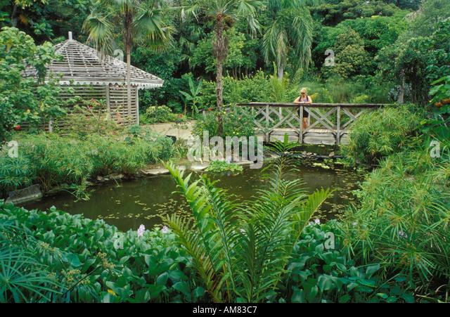 everett oneal british virgin island