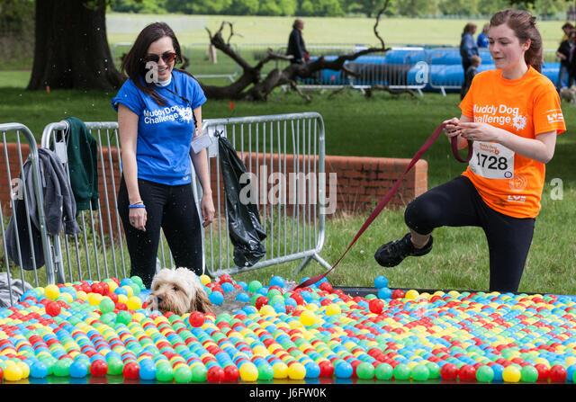 Muddy Dog Challenge Windsor Great Park