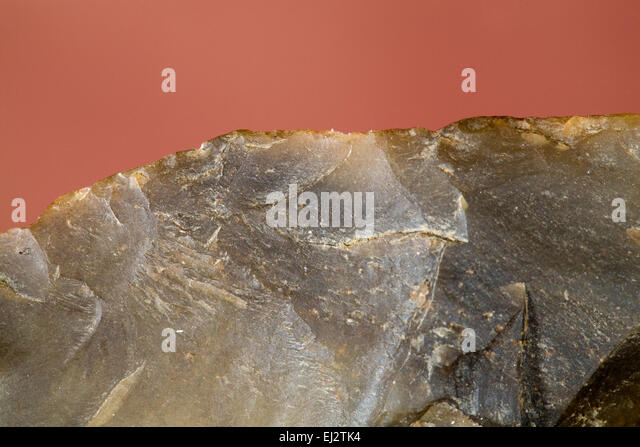 Radiocarbon dating fossils-in-Rothoyti