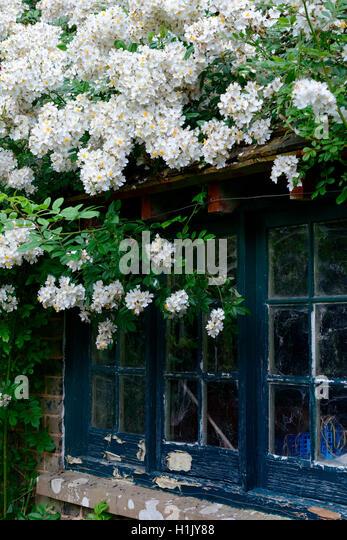 Fenster stock photos fenster stock images alamy for Haus fenster