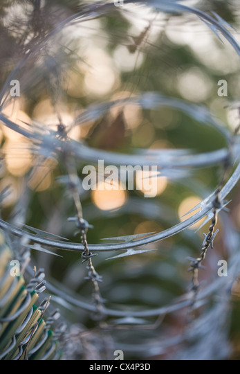 how to cut barbed wire