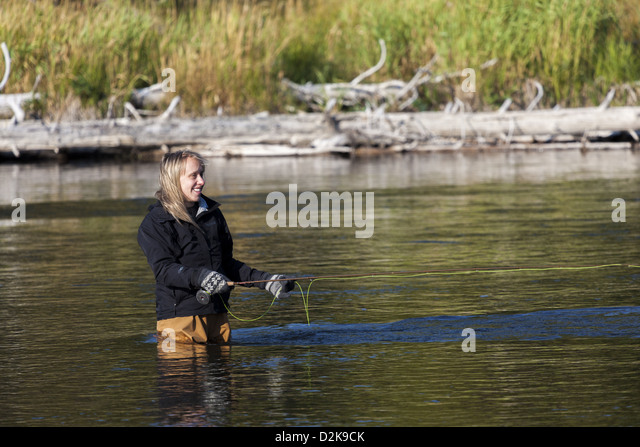Fly fishing wyoming stock photos fly fishing wyoming for Wyoming fly fishing