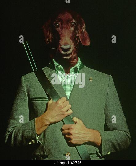 Hunting Gun Dog Stock Photos & Hunting Gun Dog Stock ...
