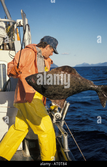 Commercial halibut fishing stock photos commercial for Commercial fishing gear