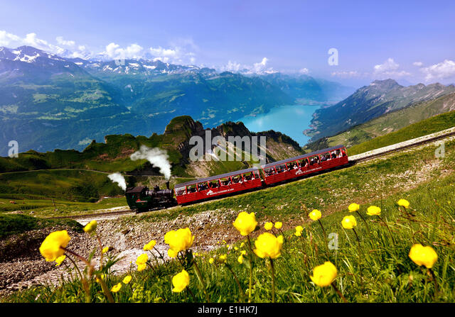 http://l7.alamy.com/zooms/bcea88c4d2b34be4b711b6c4cea157e3/view-of-the-brienz-rothorn-railway-lake-brienz-and-the-bernese-alps-e1hk7j.jpg