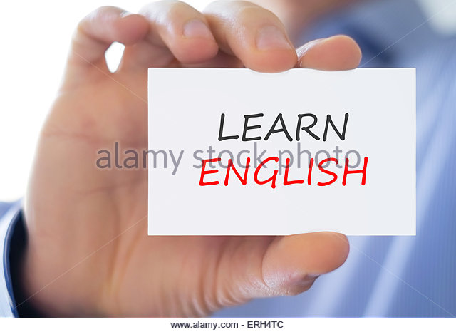 collins english polish dictionary online