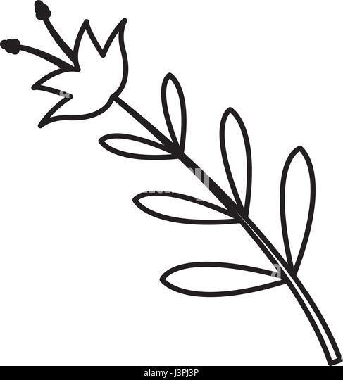 Vintag Flower Border