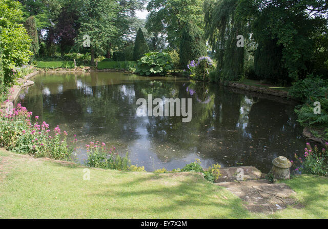 Coton stock photos coton stock images alamy for Ornamental garden ponds