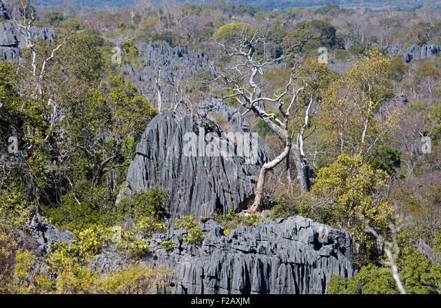 Karst Rock Formation Stock Photos & Karst Rock Formation ...