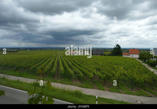 esszimmer stock photos & esszimmer stock images - alamy, Esszimmer dekoo
