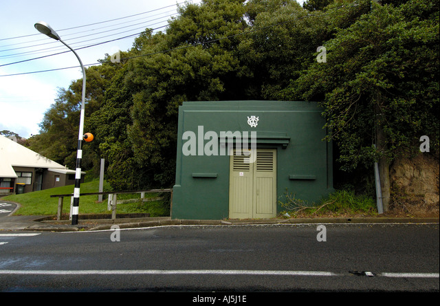 wadestown women Wadestown, new zealand topic wadestown is a northern suburb of wellington he married temperance and women's suffrage campaigner lily may kirk in.