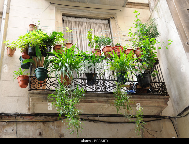 Balcony Plants Stock Photos Balcony Plants Stock Images