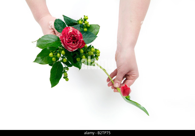 Basket Flower Arrangement Step By Step : Roses and tulips stock photos