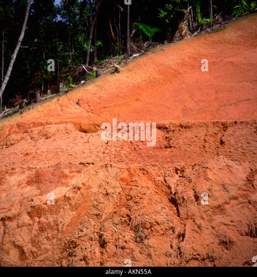 Latosol stock photos latosol stock images alamy for Top layer of soil