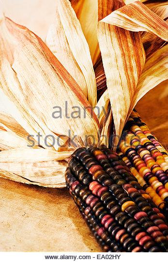 Indian Corn Stock Photos & Indian Corn Stock Images - Alamy