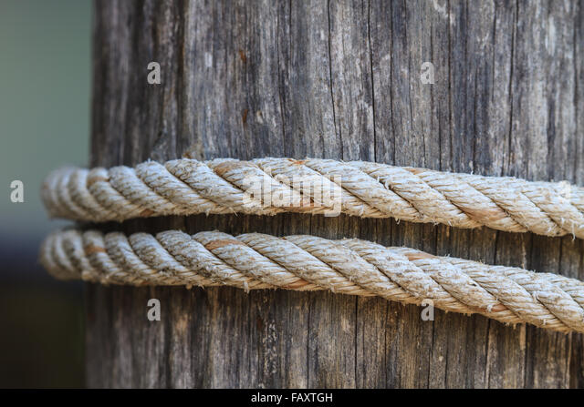 closeup knot of thick rope tied around a wooden stake - Stock Image & Closeup Tent Line Tent Peg Stock Photos u0026 Closeup Tent Line Tent ...