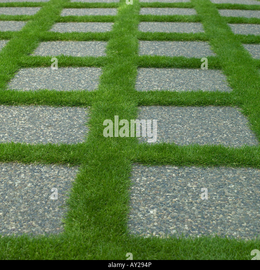 Grow light artificial stock photos grow light artificial for Stone path in grass
