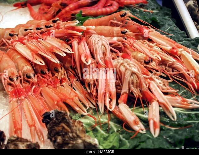 Lobster Ravioli Easy Recipe | Lobster House