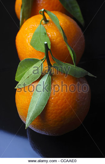 Christmas Clementine Decoration