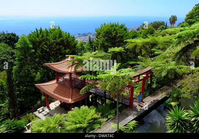 Funchal Madeira Monte Palace Oriental Gardens   Stock Image